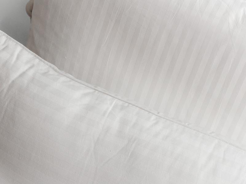 oreiller en soie 20 80 65 x 65 cm. Black Bedroom Furniture Sets. Home Design Ideas
